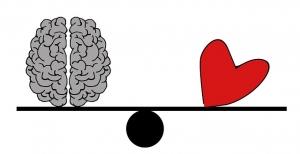 brain-2146156_640